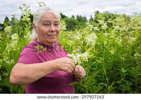 Woman in the summer picking flowers  meadowsweet - stock photo