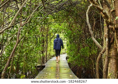 Woman is walking in natural tunnel, Sri Lanka - stock photo