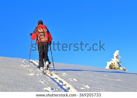 Woman mountaineer climbs on touring skis at evening - stock photo