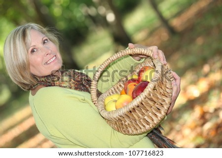 Woman picking apples - stock photo