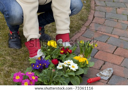 woman preparing flowers for planting in the flowerbed - stock photo