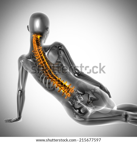 woman  radiography scan on white - stock photo