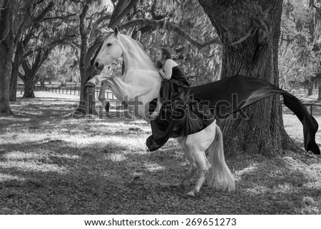 woman riding a white azteca mare horse  - stock photo
