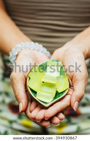 Woman's hands holding bowl with freshly cut green aloe - stock photo