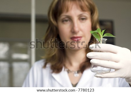woman scientist watching a plant in test tube - stock photo
