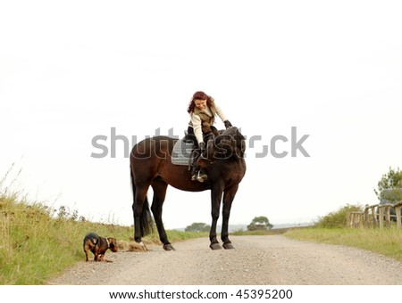 Woman sits astride a horse. - stock photo