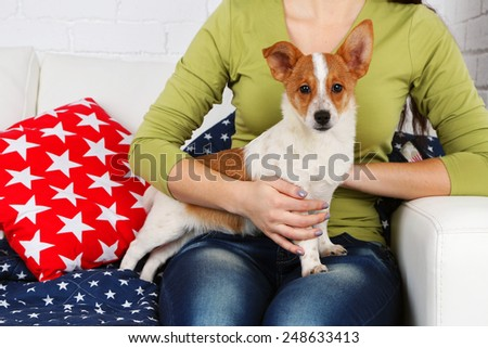 Woman sitting on sofa with cute dog, close-up - stock photo