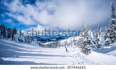 Woman skier enjoying the scenery and snow covered trees in the high alpine ski area at Sun Peaks in the Shuswap Highlands of central British Columbia, Canada - stock photo