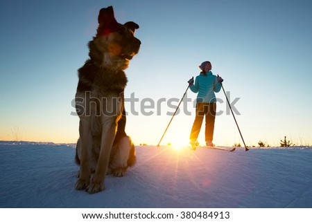 Woman skiing in a winter field with the dog - stock photo