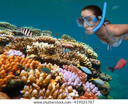Woman snorkeling dive in the Great Barrier Reef in the tropical north of Queensland, Australia - stock photo