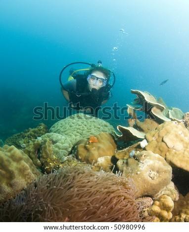 woman swimming over reef in scuba - stock photo
