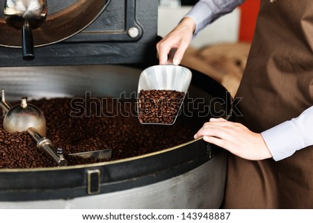 woman taking roasted coffeebeans from the roast machine - stock photo