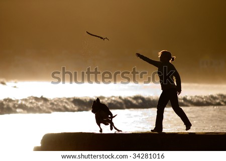 woman throwing stick for dog - stock photo