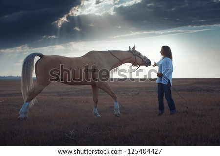 Woman training horse in the steppe during sunset - stock photo