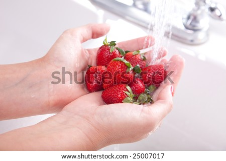 Woman Washing Strawberries in the Kitchen Sink. - stock photo