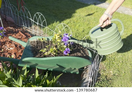 Woman watering flowers and plants in a wooden wheelbarrow filled with dirt - stock photo