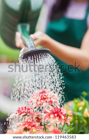 Woman watering flowers in garden centre - stock photo