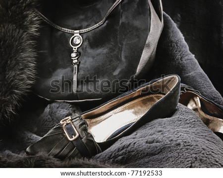 woman wear accessories: fashionable handbag and shoes at fur - stock photo