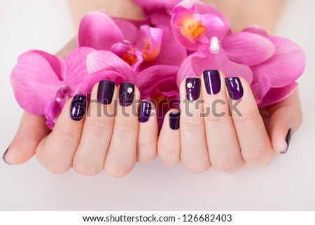 Woman with beautifully manicured purple nails holding a handful of pink flower petals - stock photo