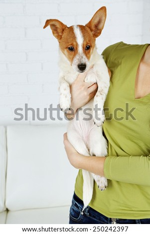 Woman with cute dog on light background - stock photo