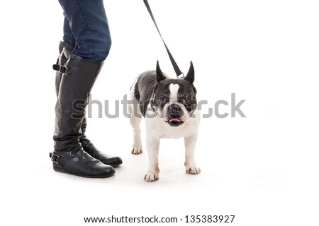 Woman with her dog on leash over white background - stock photo