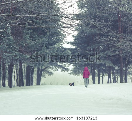 Woman with Small Dog Walking in Snowy Winter Park - stock photo