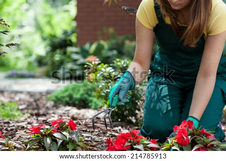 Woman working in garden on a sunny day - stock photo