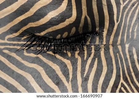 Women eye, close-up, concept of sadness, zebra pattern - stock photo