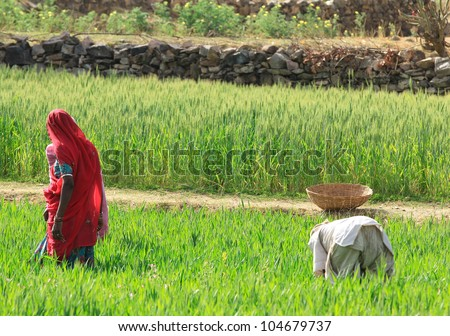 Women Farming - stock photo
