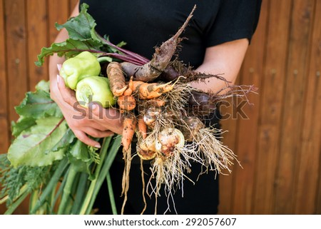 Women holding delicious fresh vegetables - stock photo