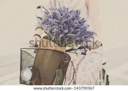 Women riding bike with lavender bouquet in basket - stock photo