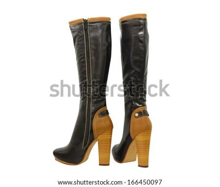 women shoes  on white background - stock photo