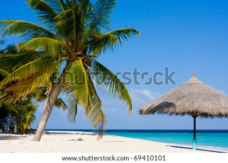 wonderful landscape with a palm and umbrella - stock photo