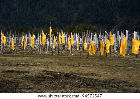 Wonderful prayer flag landscape in Tibet valley with blue sky and white cloud - stock photo