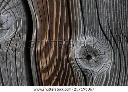 Wood - background - stock photo