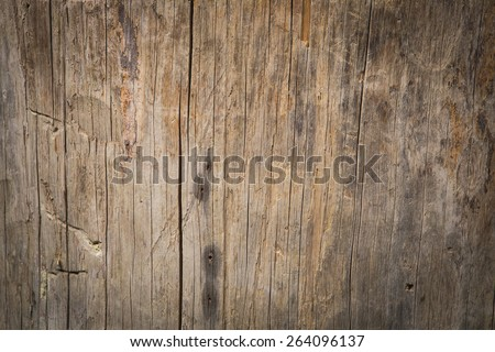 Wood background high detail texture - stock photo