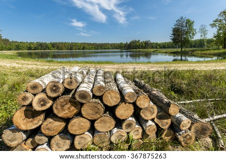Wood balls on the lake in the forest, Southern Poland - stock photo