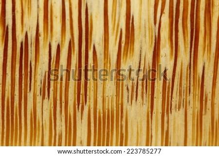 Wood bamboo texture background - stock photo