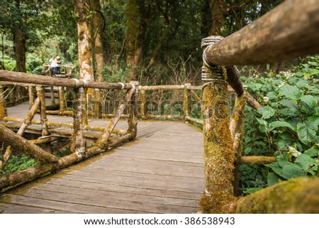 wood bridge in the forest. - stock photo