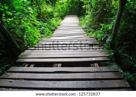 Wood bridge in the forest./Wood bridge. - stock photo
