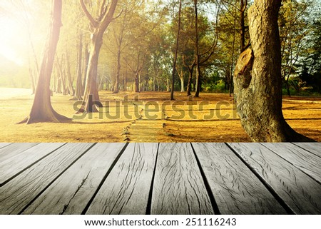 wood  floor and forest  - stock photo