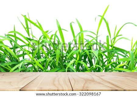 Wood floors and grass background.used for display your products. - stock photo