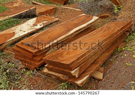 Wood for the furniture industry. - stock photo