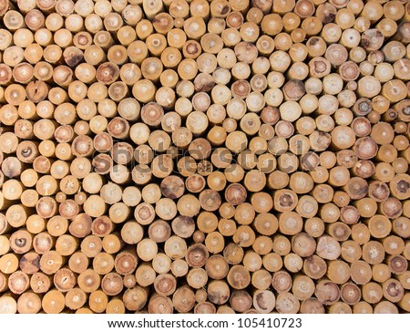 wood logs of the timber for the background. - stock photo