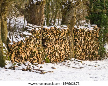 Wood logs stack stored during winter - stock photo