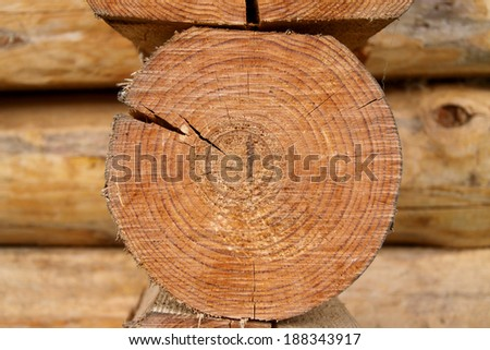 Wood logs, wood background, wooden - stock photo