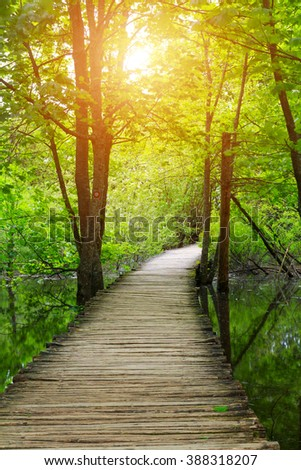 Wood path in the Plitvice national park in Croatia - stock photo