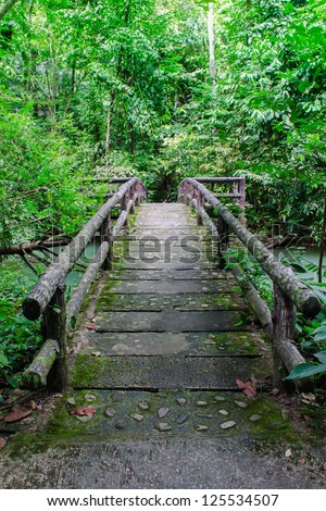 Wood path way to forest - stock photo