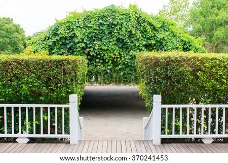 Wood pathway in the garden - stock photo