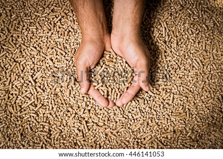 Wood pellets in the background. Biofuels. Cat litter. Man's hands. - stock photo